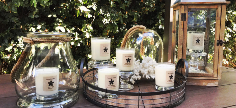 Plumeria Scents - Hand Poured Soy Candles